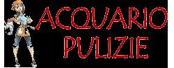 Acquario Pulizie